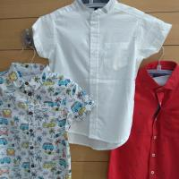 Shirts at Mulbery Kids Clothing in Kothamangalam