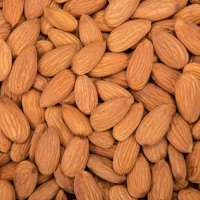 American Almonds at Mamra Almonds in Chennai