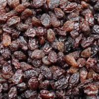RAISINS at Anmol Dry Fruits in Chennai