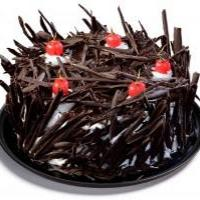 Black Forest at Cake Hut in Ernakulam