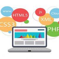 Web Development Company in Delhi at Book My Dealer in Delhi