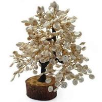 Gomati Chakra Tree  Good Luck Gift for Home at White Aura Vastu Store in Navi Mumbai