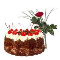 Appetizing Black Forest Cake with a Beautiful Red Rose at CakesIndiaWide in Kolkata