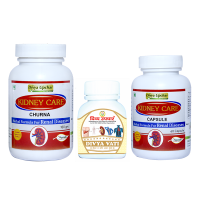 Divya Kidney Care Kit at Divya kit in Chandigarh