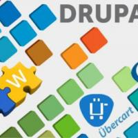 Hire Drupal Developers in India at Alan Solutions in Coimbatore