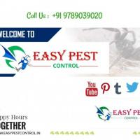 Easy Pest Control at NIHM in Chennai