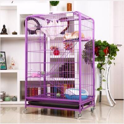 cat Cage at Angel Wings in Perumbavoor
