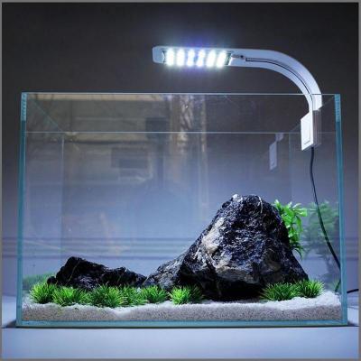 Aquarium Lamp at Angel Wings in Perumbavoor
