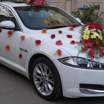 Car Decoration at Royal Caterers in Kothamangalam